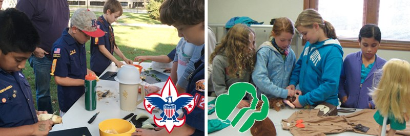 Boy Scout and Girls Scout Programs